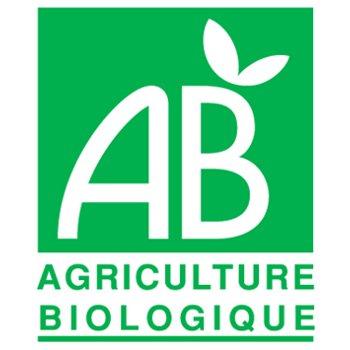 logo AB ancienne version